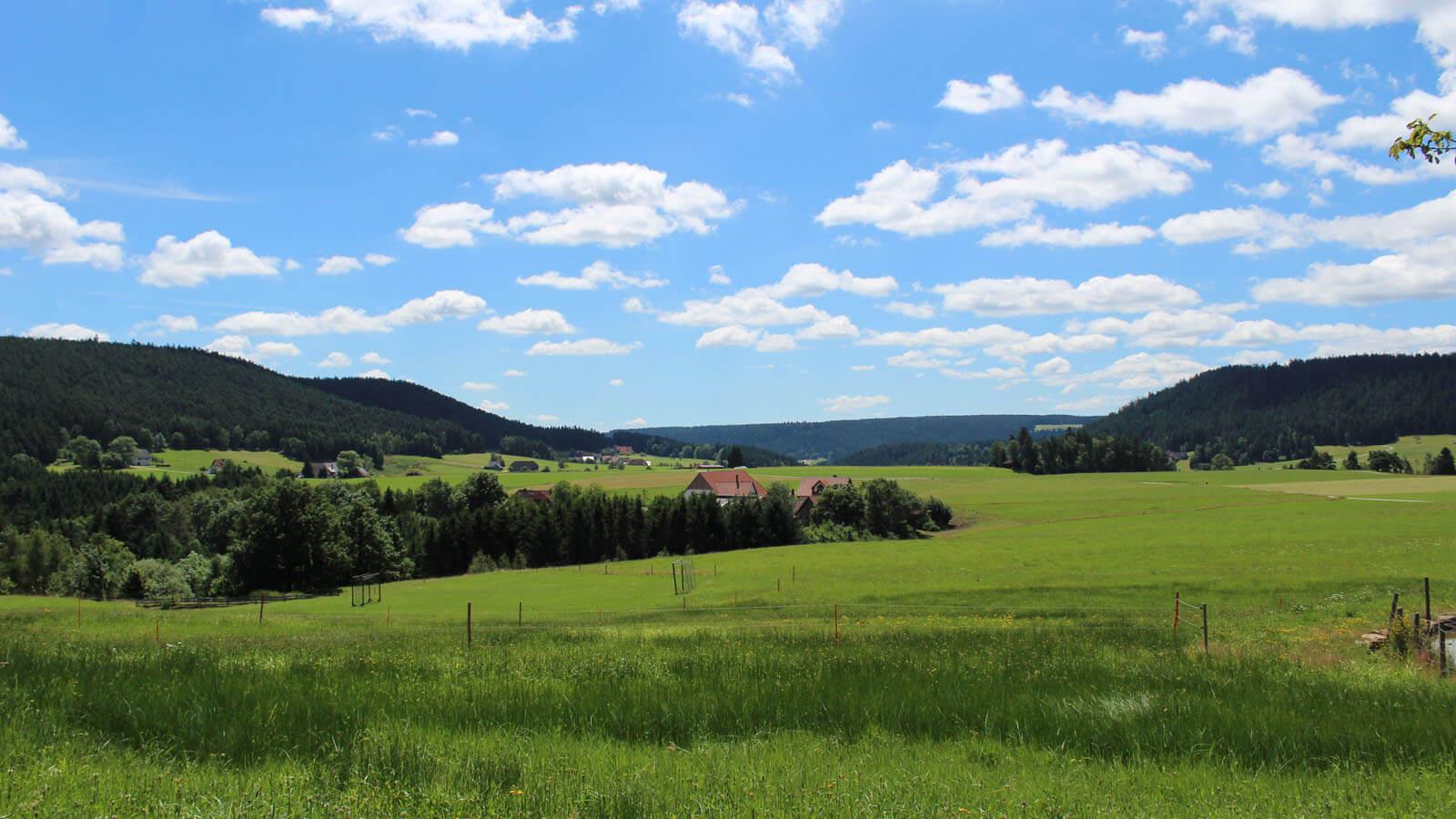 Blick ins Sulzbachtal. Foto: LEV MS