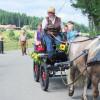 Erlebnistag Landwirtschaft 2010 Kutschfahrten