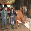 Workshop Sicherer Umgang mit Rindern Lauterbach 2013. Foto: LEV MS
