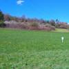 Exkursion Giftpflanzen - Die Herbstzeitlose nach Balingen-Geislingen 2016 - Versuchsfeld. Foto: LEV MS