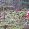 IBG-Camp 2013 Moorpflege