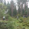 IBG-Camp 2011 Moorpflege