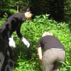 IBG-Camp 2012 Springkrautaktion mit Azubis von Hans-Grohe im Kuhbach