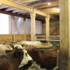 Stallbaulehrfahrt - Seminar Stallbaulösungen für kleine Rinderbestände - Mutterkuhbetrieb 1. Foto: LEV MS