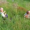 Auch die Kleinsten haben ihren Spaß...Foto: LEV MS
