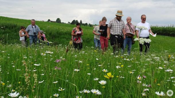 Die Jury war vom Engagement der Bewirtschafter und der Vielfalt der Pflanzen beeindruckt. Foto: LEV RW.