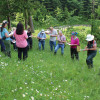 Die Bewertung der Wiese wird gemeinsam diskutiert. Foto: LEV MS.