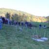 Herdenschutz in der Praxis am 11. Oktober - ein Prototyp von Horizont hat sich bewährt. Foto: LEV MS